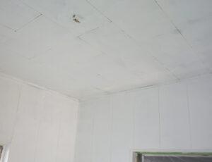 天井ペンキ