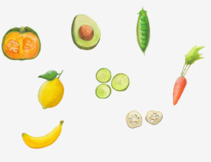 食品  イラスト制作